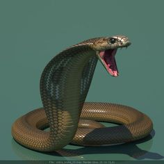 The 3d model of king cobra by steplont | Design | 3D | CGSociety