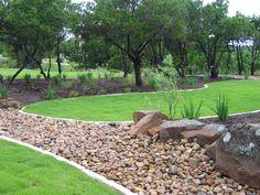 Austin Native Plants, Native Texas Plants, Drought Tolerant Landscaping