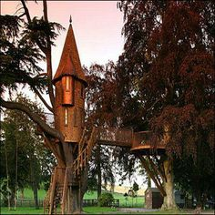 amazing bubbles around the world | collection of amazing tree-houses found around the world. - News ...