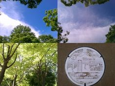 Good morning!The last saturday of Jun,it's fantastic blue sky!Our tension's MAX(*^。^*)Above the East Park,the summer clouds are floating,so brilliant☆The manhole cover near Kobe City Hall express nice Kobe's characteristic♡