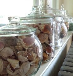 Shell Jars  (credit ⚓ René Marie Photography) ⚓ Beach Cottage Life   http://www.etsy.com/shop/ReneMariePhotography