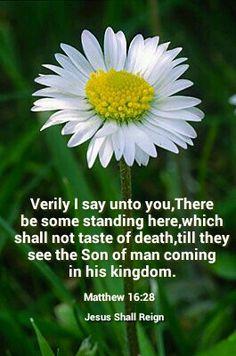 Matthew 16:28 KJV