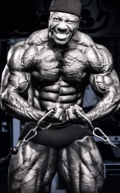 Shawn Rhoden is the current reigning World IFBB Champion and still retains his Mr Olympia title from Rhoden is best known as the face of leading nutrition companies. Mr Olympia, Phil Heath, Fit Board Workouts, Anatomy Reference, Bodybuilding Motivation, Olympians, Powerlifting, Muscle Men