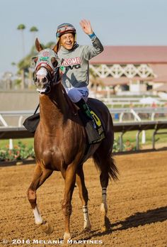 LastChance2say farewell to California Chrome as he runs his last race in California today at @losalracing So BitterSweet #GoodThingsToCome