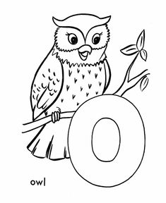 ABC Coloring Sheet Letter O Is For Owl