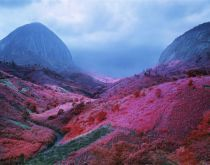 Richard Mosse - The Photographers' Gallery