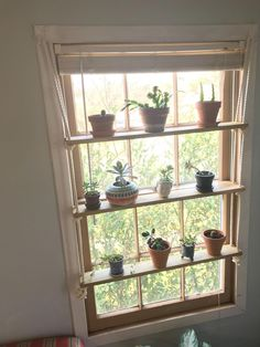 White Cotton Rope is part of Window plants hangs) Perfect for the tiny succulent hoarder in your life Can be installed in window or wall space Indoor gardens, succulent displays, plant propagati - Window Plants, Plant Window Shelf, Shelf Above Window, Indoor Window Garden, Herb Garden Indoor, Window Bed, Display Window, Garden Windows, Indoor Gardening