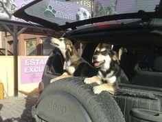 Pinky & Mora