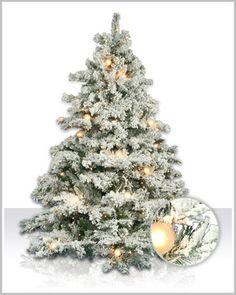 Flocked Alaskan Tree #ChristmasTreeMarket #DIYornaments