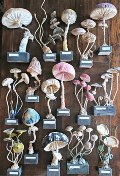 mushrooms by Mister Finch, UK is a textile artist, plants, animals, birds, insects...his work is super!!