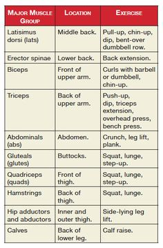 Different exercises work different muscle groups. Here some good exercises for different parts of your body: