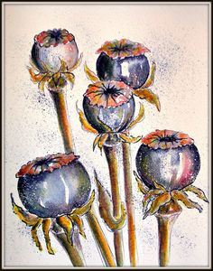 pen and ink watercolor poppies Watercolor Poppies, Watercolor Artists, Ink Painting, Watercolor And Ink, Watercolor Paintings, Poppies Painting, Watercolours, Poppy Decor, Pen And Wash