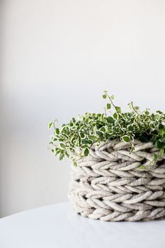New! Arm Knit Basket Pattern in @taprootmag. Your favorite plant needs this desperately. http://www.flaxandtwine.com/2016/06/arm-knit-basket-featured-taproot/?utm_campaign=coschedule&utm_source=pinterest&utm_medium=anne%20weil%20%7C%20flax%20and%20twine&utm_content=Arm%20Knit%20Basket%20Pattern%20Featured%20in%20Taproot