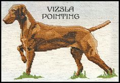 POINTER-SETTER-COUNTED-CROSS-STITCH-PATTERNS