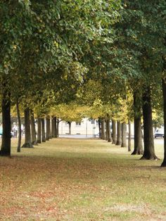 Neuruppin, DE |Pinned from PinTo for iPad|