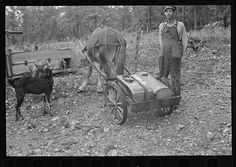 Sharecropper with homemade water wagon, Arkansas