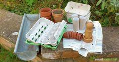 7 Öko- und Recycling-Alternativen zu Anzuchttöpfen aus Torf