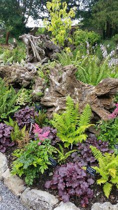 Gardening – Gardening Ideas, Tips & Techniques Forest Garden, Woodland Garden, Rockery Garden, Garden Paths, Landscape Design, Garden Design, Garden Pictures, Garden Inspiration, Garden Ideas