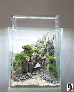 nano scape with Ancient Stone hardscape and Cladophora moss - aquascaping Aquarium Sump, Biotope Aquarium, Nano Aquarium, Home Aquarium, Aquarium Design, Aquarium Fish Tank, Planted Aquarium, Ideas Florero, Aquaman
