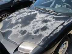 These photos show the result of applying L Oxide Oxide Reducing Emulsion to the hood of a black Pontiac Sunfire suffering from severe clear coat failure and peeling. Black Car Paint, Car Paint Repair, Car Repair, Pontiac Sunfire, Car Buying Tips, Car Cleaning, Borax Cleaning, Car Restoration, Car Painting
