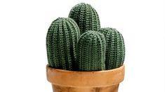 Oavsett om du vill använda den som nåldyna eller enbart som prydnad kan vi nästan lova att den virkade kaktusen blir en riktig snackis där hemma. Vårens trendigaste växt virkar du själv –...