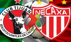 Ver Xolos Tijuana vs Necaxa EN VIVO Liga MX 2018 Online