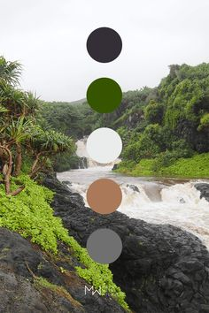 Neutral color palette inspired by nature, Oheo Gulch. Photo taken in Haleakala National Park on Maui Hawaii. Color Palette For Home, Earth Colour Palette, Color Schemes Colour Palettes, Earth Tone Colors, Neutral Colour Palette, Earth Tones, Color Combinations For Clothes, Beautiful Color Combinations, Apartment Color Schemes