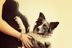 A pup and a belly <3 love this maternity pose with a dog