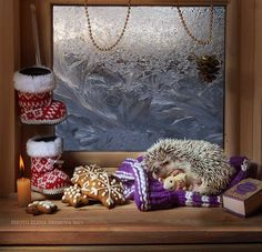 good Christmas by Elena Eremina on 500px