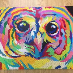 Colorful owl hama perler bead art by Janne Gerner