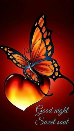 how to draw a butterfly design Butterfly Drawing, Butterfly Painting, Butterfly Wallpaper, Butterfly Design, Heart Wallpaper, Good Night Prayer, Good Night Blessings, Good Night Image, Good Morning Good Night