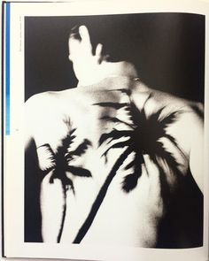 Black palms. Raf Simons. The Antwerp6+ book feels like/right Friday morning. Japanese edition with Japanese text but images that will forever be Belgian. Email if you want@idea-books.com #antwerp6 #rafsimons