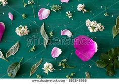 Beautiful floral background. Flowers and leaves on green wooden board.