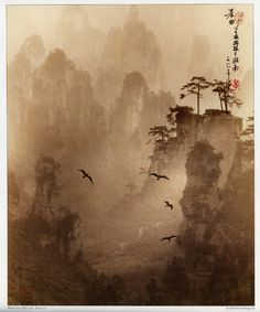 Don Hong-Oai's mystical and delicately toned sepia landscapes using the Chinese ''pictorial'' style of layering several negatives to compose a scene.