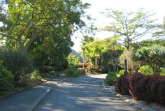 The Botanic Gardens is a great place to walk around