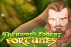Rival Gaming has released one more five reel slot with twenty pay-lines. This is the #SherwoodForest Slot Machine. It has #prizes valued up to $25,000 and features such as scatters, free spins, and wild symbols.  This slot is based on Sherwood Forest, the place where the #legendary Robin Hood lived according to the myths. Its theme is inspired by #RobinHood and his band of men.