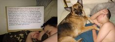 Cole's wish:  One child's profound statement: Dogs are dying because no one will say hello...