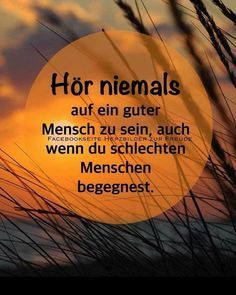 I am not a mother Theresa! Of course I am-Es tut mir leid. Natürlich bin ich so wie ich bin… I'm so sorry. I am not a mother Theresa! Of course I am the way I am … – - Quotation Marks, Self Awareness, S Pic, New Friends, Love Life, New Moms, Self Love, Quotations, Affirmations