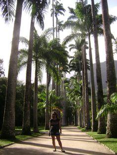 Jardín Botanico | Río de Janeiro | Brasil
