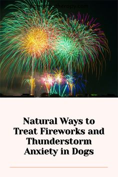 Here are some things that you can do at home that will help if your pet suffers from thunderstorm and fireworks anxiety Dog Anxiety, Thunderstorms, Dog Photos, Dog Grooming, You Can Do, Fireworks, Your Pet, Dog Lovers, Pets