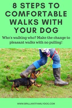 Dog Walking: Get your dog walking on a loose leash - sooner than you thought possible! Read the post | #dogtraining, #puppytraining, #newpuppy, #dogwalking | www.brilliantfamilydog.com