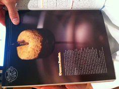 Smore's Fondue - Melting Pot (Sactown #19)