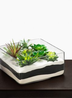 12 X 12 X 6IN SQUARE GLASS TRAY