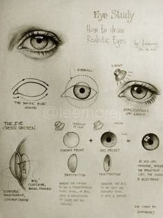 〉〉how to draw an eye