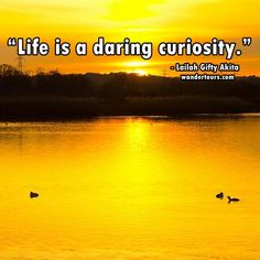 Life is a daring curiosity. #travel #travel quotes #wanderlust  #travel #quotes #travelquotes #wanderlust #adventure #journey
