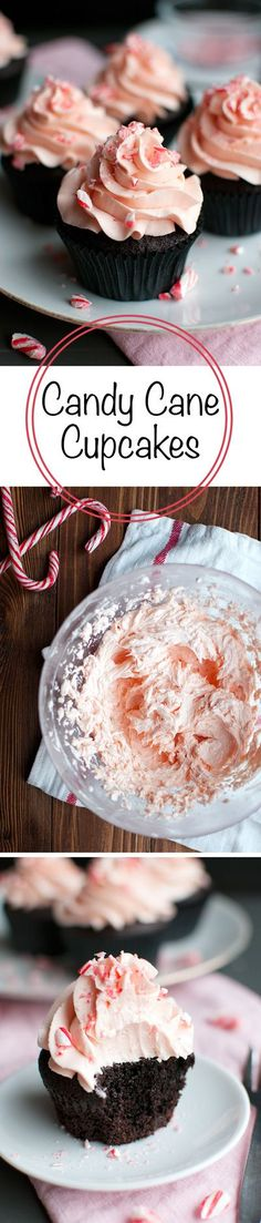 Candy Cane Cupcakes - Super chocolatey cupcakes topped with the BEST candy cane buttercream. Delicious! | thetoughcookie.com