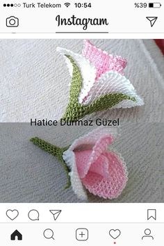This Pin was discovered by ayş Jute Crafts, Diy And Crafts, Crochet Doilies, Crochet Flowers, Embroidery Stitches, Hand Embroidery, Free Crochet, Crochet Hats, Lace Art