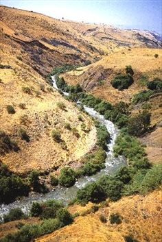 The Jordan River flows from four streams that appear along the slopes of Mt. Hermon, each a result of the melting snowfalls from the peaks above. From its sources in the North to the river's end at the dead sea their is 65 miles but from overhead it looks like a snake, winding and curving, strething the short distance to more than 160 miles