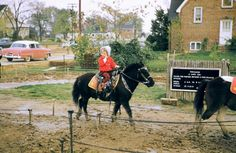 Ponyland at Bailey's Crossroads in Virginia. This may have been my first pony ride. It led to a lifetime passion for equines. Years later, we were fortunate to have owned five fabulous horses. Pony Rides, Falls Church, Drive In Theater, Northern Virginia, Alexandria, Old Pictures, Winchester, Childhood Memories, Nostalgia