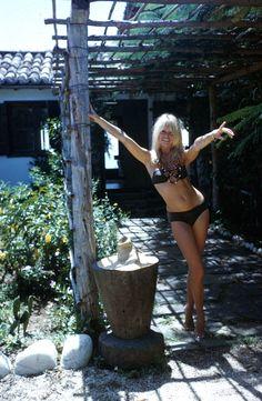Brigitte Bardot                                                                                                                                                      Plus